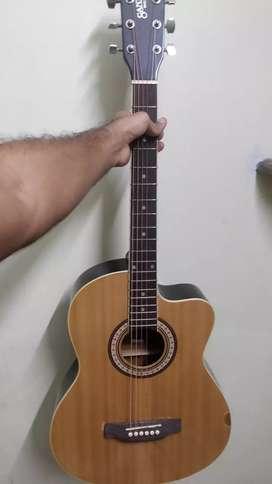 Santana acoustic guitar with bag