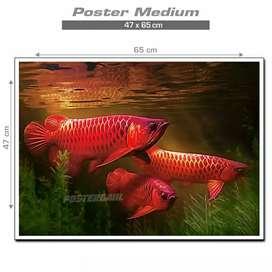 Poster Ikan Arwana