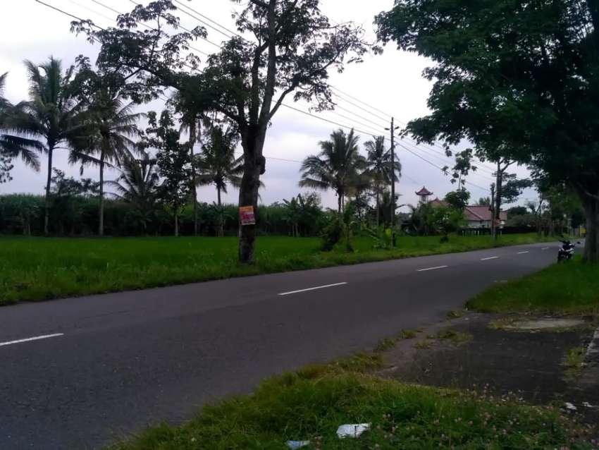 Disewakan Tanah Kas Desa di Dekat Pom Bensin Balong Ngaglik Sleman 0