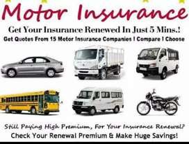 Insurance at low rate