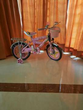 Kids cycle not used.