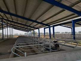 Dairy shed supplier and manufacturer.