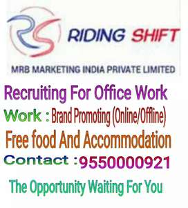 Online Brand Promoting, Office Work