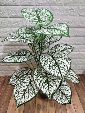 daun keladi artificial hias 18daun 70cm