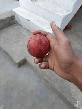 Pink leather and red leather cricket ball