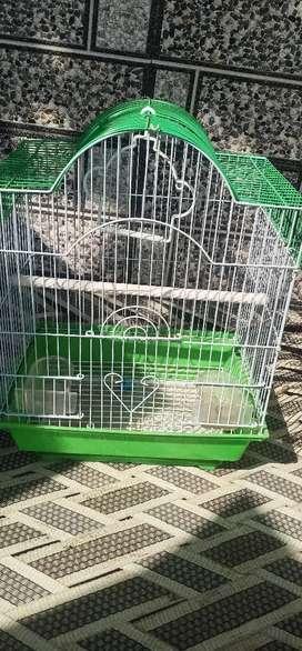 Lovebird cage