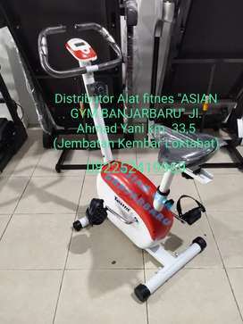 Ready sepeda statis magnetic termurah TL 8219