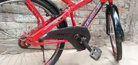 Hercules brut cycle