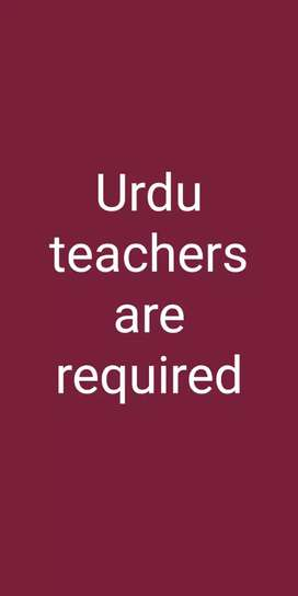URDU teachers are required for 9th 10th classes