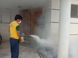 Fumigation, Termite treatment and Disinfection a