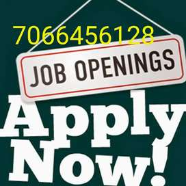 Providing part time / full time/home based and  office based job
