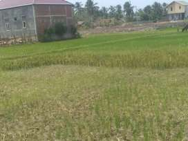 Dijual tanah daerah desa bayu aceh besar