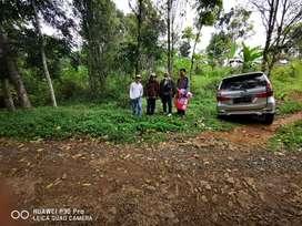 Tanah murah profit bagus untuk di bangun peternakan dan villa