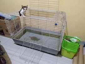 Jual kandang kucing ukuran besar 90×55×60 cukup untuk 4 kucing Dewasa