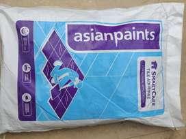 Asian paints tiles adhesive
