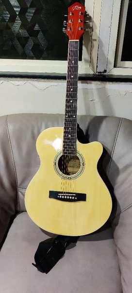 Trinity Semi Acoustic Guitar