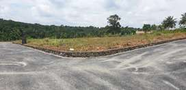 6.25 cents ,Residential plot at Mulanthuruthy