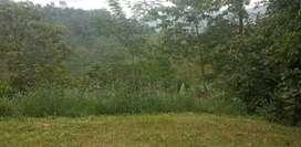 Tanah murah kemuning ngargoyoso