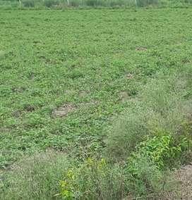 जौनपुर  यादवेंद्र नगर स्टेशन से 50 मीटर दूर