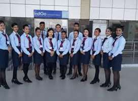Airlines Job Opened-Airport Greeting from Airlines,
