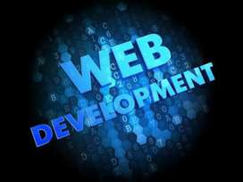 I am Web Developer