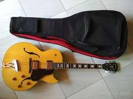 Gitar Hollowbody Washburn J3