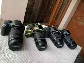 DSLRs nikon/canon on rent in chandigarh