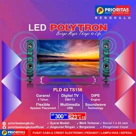 LED 43 POLYTRON