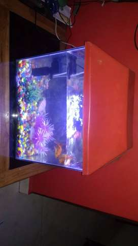 I want to sale my fish aquarium it is in good condition