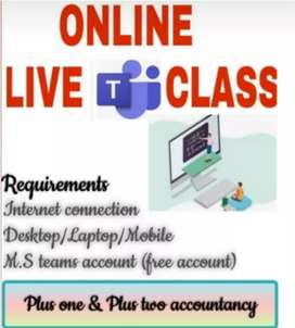 Online tution for 10th maths, 11-12 accountancy (kerala)