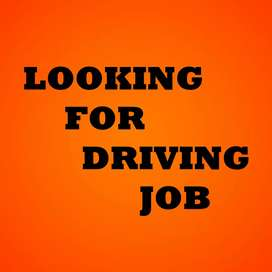 Looking for a full time office or private vehicle driving job