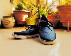 US POLO party wear shoes for RS 499