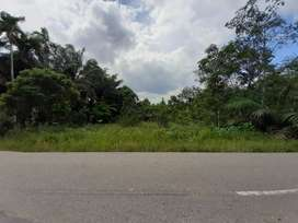 DI Jual Tanah daerah Ness 11 tumbuk pinggir jalan