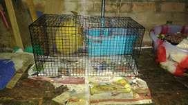 Brand new pet cage iron.