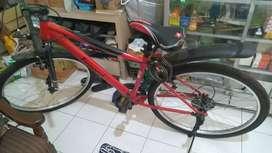 Sepeda Anak dewasa
