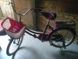 Sepeda bekas merk Phoenix