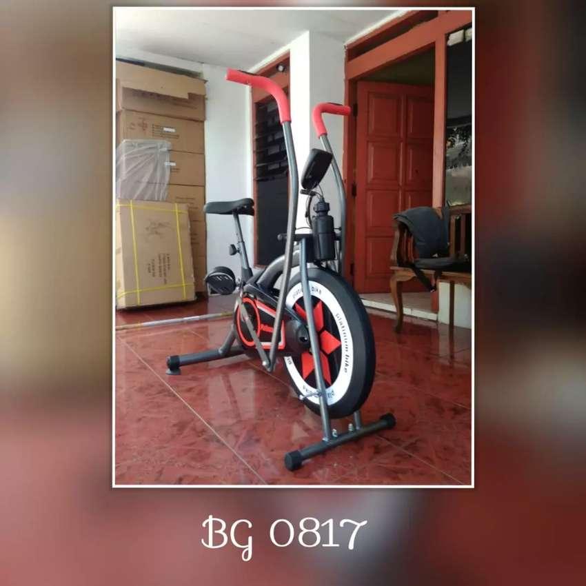 Sepeda Statis Platinum Bike // Ruodrik ART 18D31 0