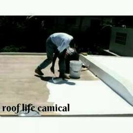 Roof life chemical services