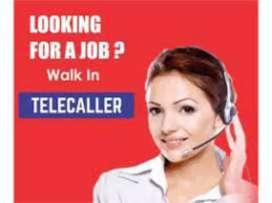 Urgent Telecaller cum back office required