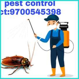 Sunshine pest/control