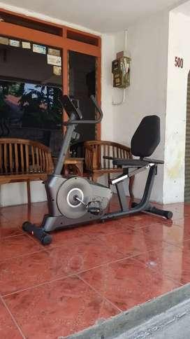 Recumbent bike mahnet