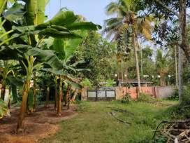 Plot of 1.5 acres