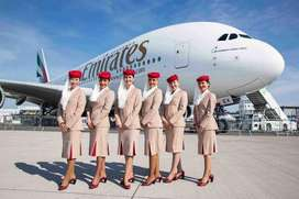 looking for 100 cabin crews and ground staff