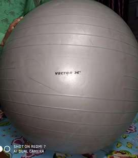 Vector 85 cm GYM BALL