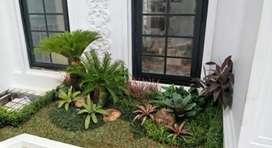 Tukang taman hijau minimalis/pancoran