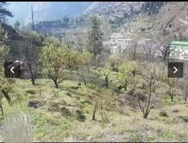 5 bigha plot for sale