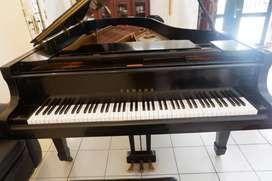 grand piano yamaha c7 dan semigrand kawai bl 71