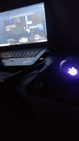 Steel series Gaming Mouse ( Wired )