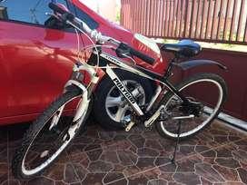 Sepeda Poligon XTRADA sport