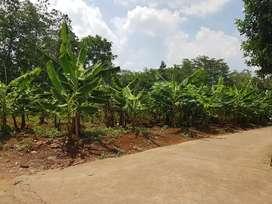 Tanah bagus cocok untuk rumah cluster, Meteseh Boja
